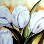 Vier witte tulpen