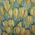 Tulpenveld geel
