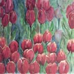 Tulpenveld (verkocht)